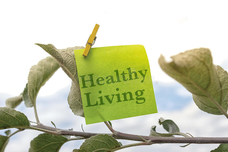 Healthy Living. Abstract concept whit note clipped on a leaf in a tree royalty free stock images