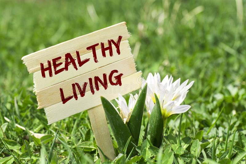 Healthy living sign. Healthy living on wooden sign in garden with spring flower stock image