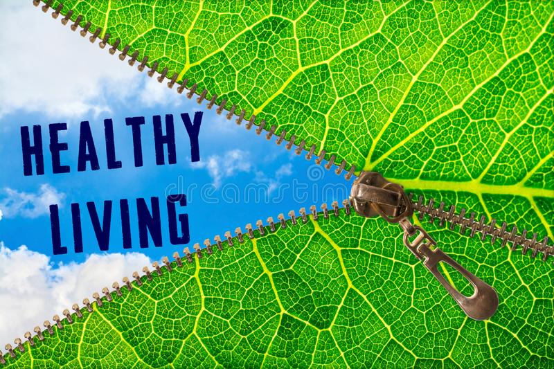 Healthy living word under zipper leaf. Open zipper leaf and showing sky with Healthy living word stock images