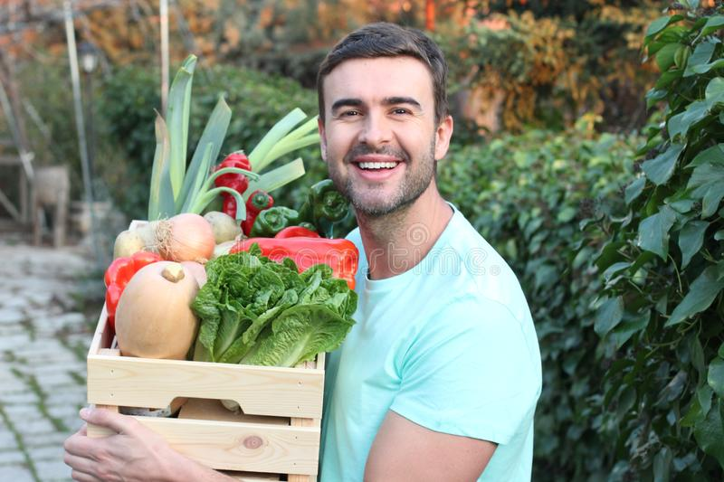 Healthy looking farmer holding a box of veggies royalty free stock photos
