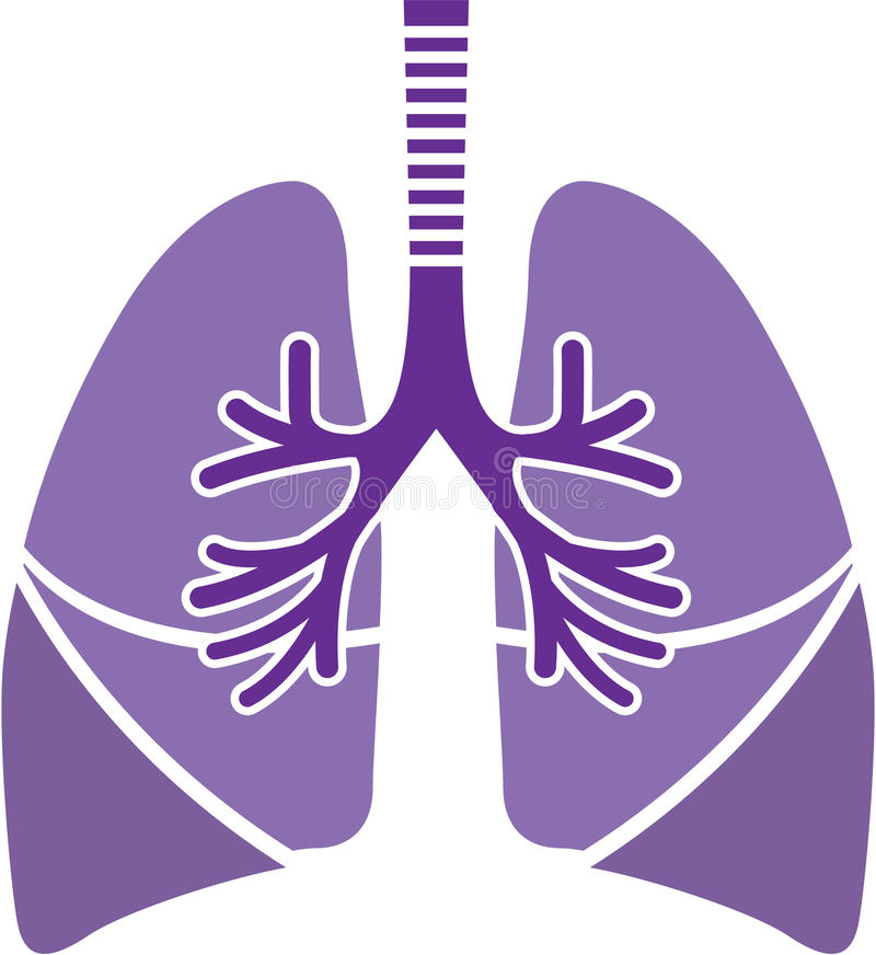 Healthy Lungs. Vector illustration clip-art eps