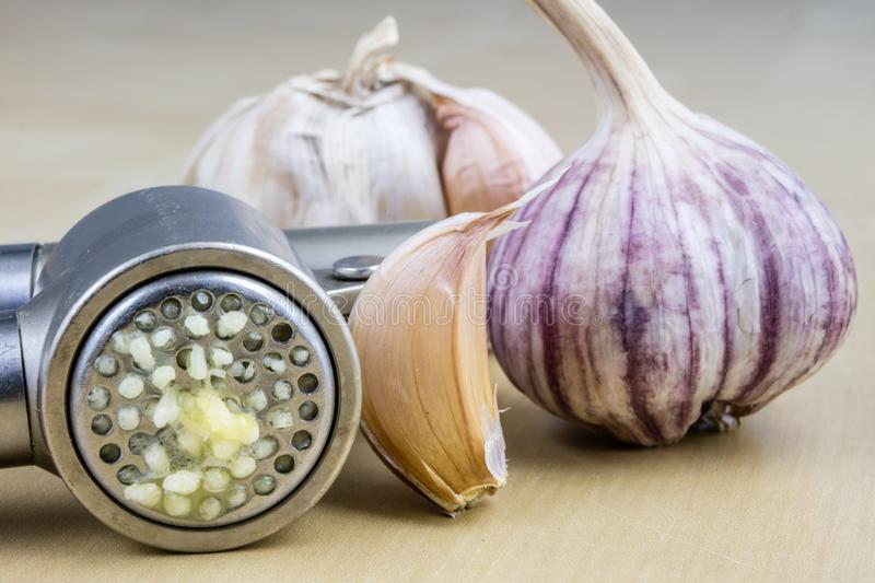 A healthy and medicinal garlic syrup squeezed with a kitchen squeezer. Natural methods of treating colds. Light background royalty free stock photo