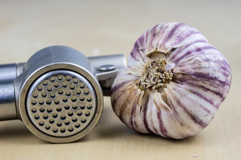 A healthy and medicinal garlic syrup squeezed with a kitchen squeezer. Natural methods of treating colds. Light background stock photos