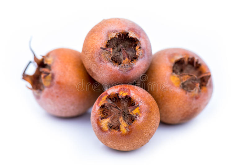 Download Healthy Medlars stock image. Image of healthcare, tropical - 27997597