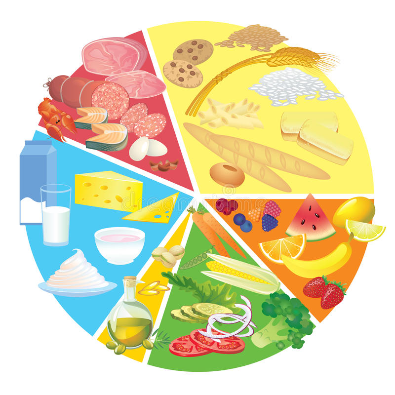 Healthy nutrition food plate rule royalty free illustration