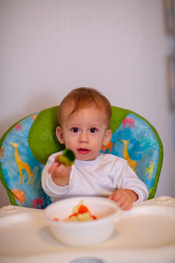 Healthy nutrition for kids. vegetable food for infant. Children. Eat vegetables. Baby boy eating healthy vegetables royalty free stock photography