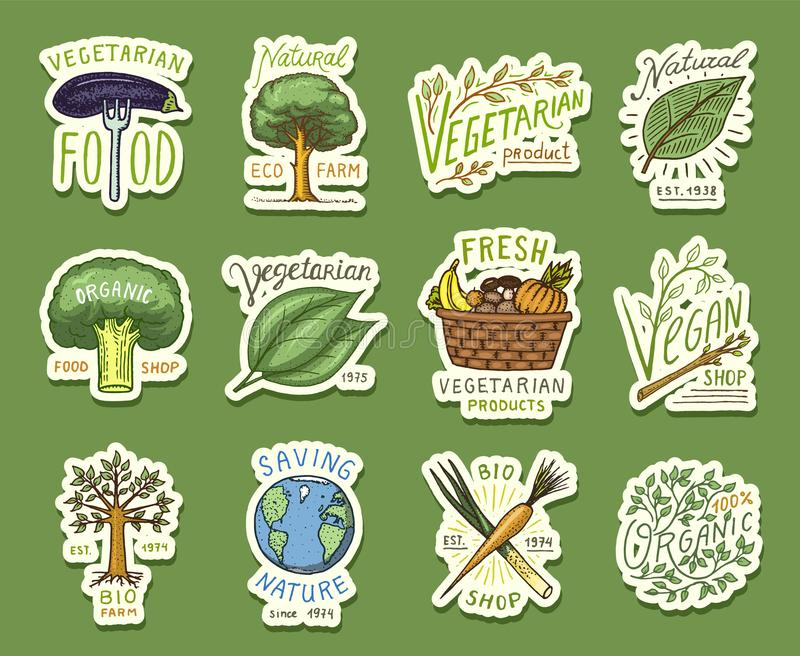 Healthy Organic food logos set or labels and elements for Vegetarian and Farm green natural vegetables products, vector royalty free illustration