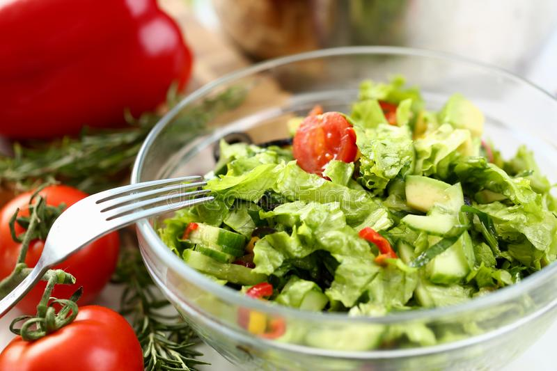 Healthy Organic Vegetable Salad Fork Photography. Fresh Dish with Chopped Green Lettuce, Cucumber and Red Cherry Tomato in Glass Bowl. Rosemary Herb on Kitchen royalty free stock photography