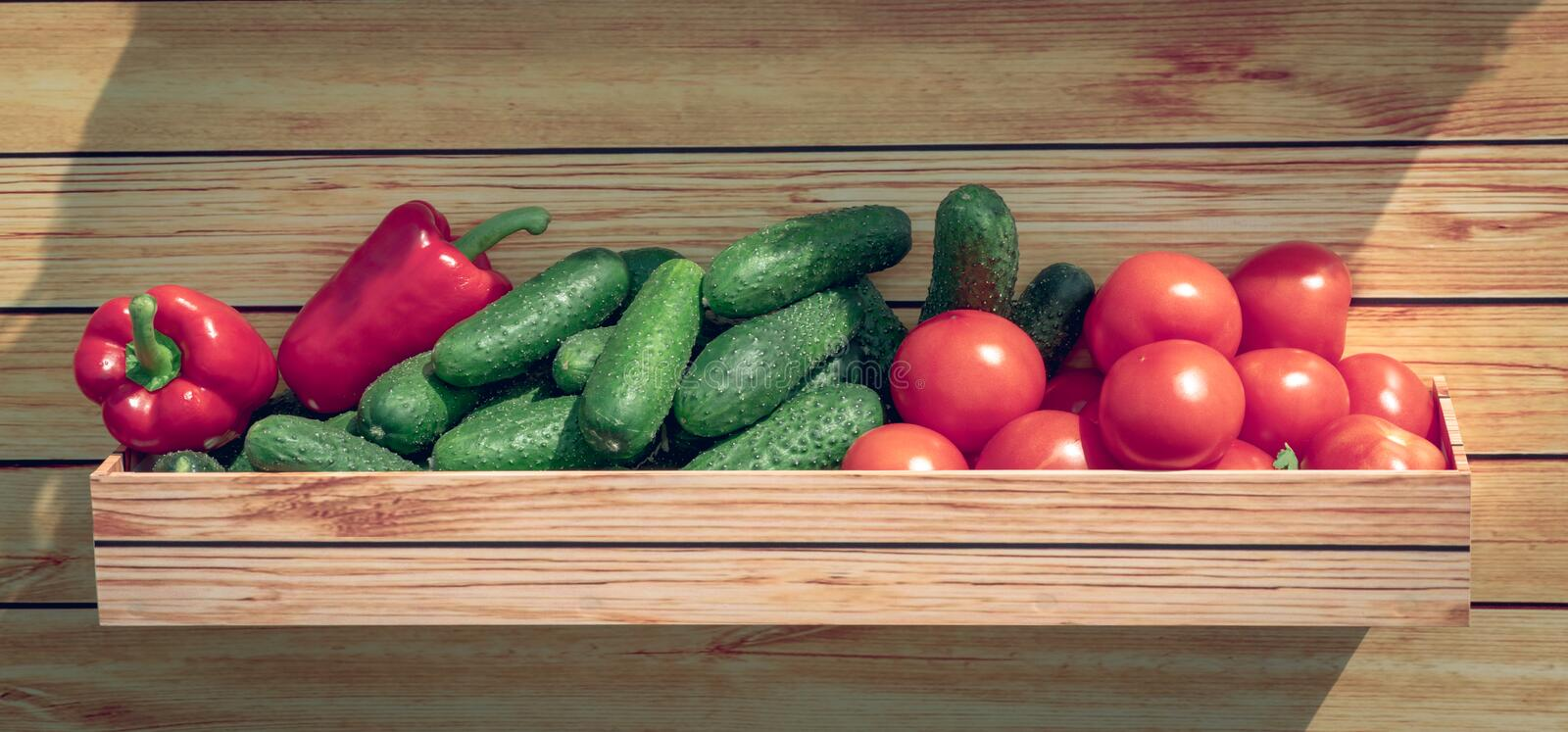 Healthy organic vegetables in a wooden basket on a wooden background. Organic farm tomatoes, paprika,cucumbers stock images