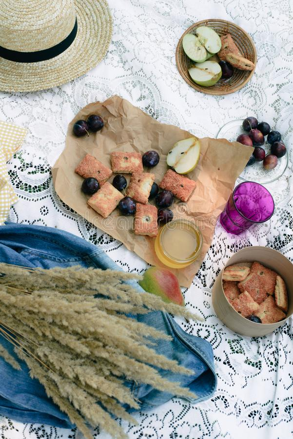 Healthy picnic for a summer vacation with freshly bake, fresh fruit, apples, plums. Pears stock image