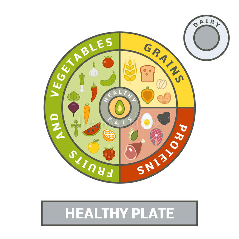 Healthy plate concept. Vector illustration of balanced meal royalty free illustration