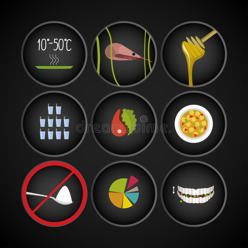 Healthy principles of nutrition icons royalty free illustration