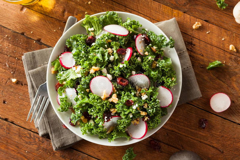 Healthy Raw Kale and Cranberry Salad stock images