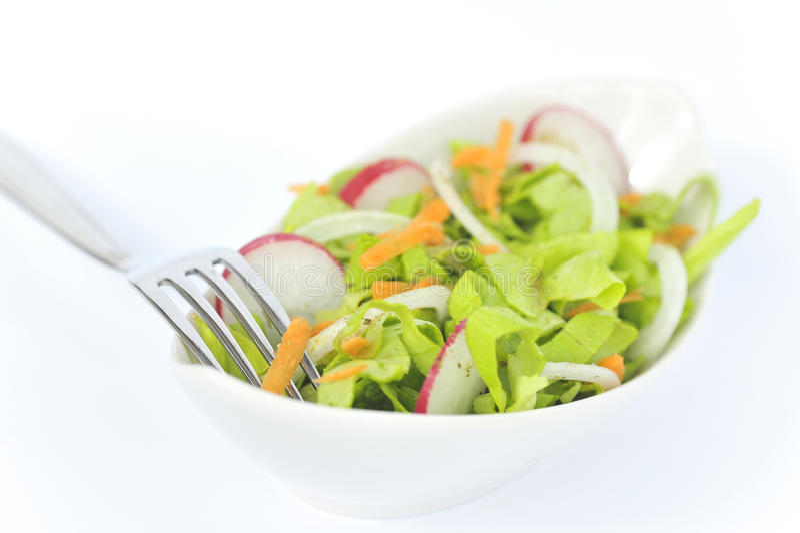Download Healthy Salad stock image. Image of diet, appetizer, macro - 18269747
