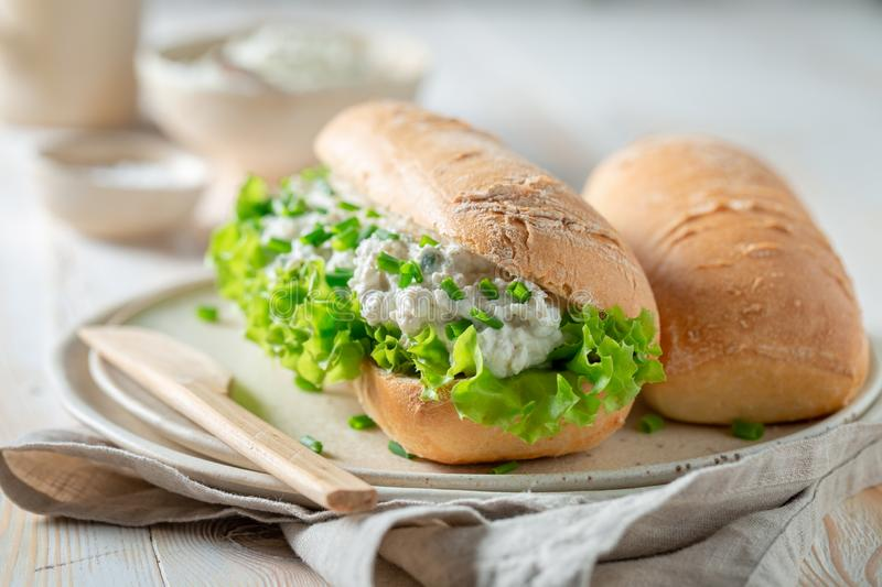 Healthy sandwich with crunchy bread, chive and fromage cheese. On wooden table royalty free stock photos
