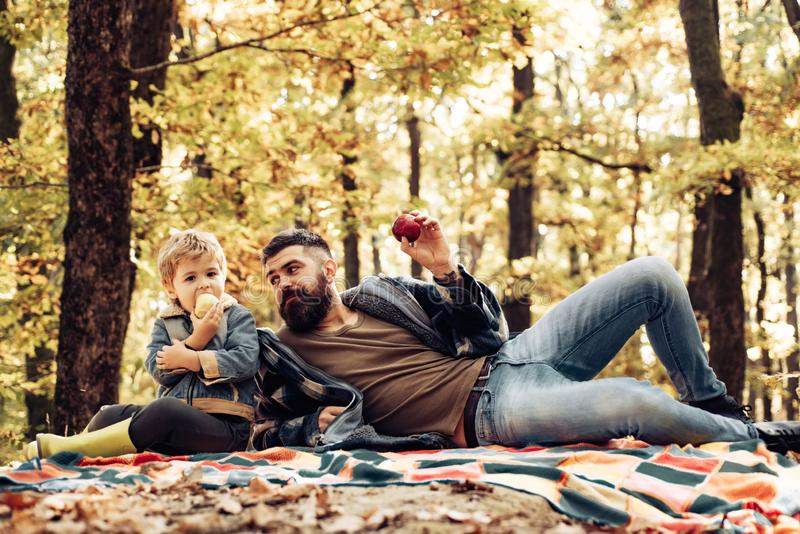 Healthy snack. Bite juicy apple. Family picnic. Hipster bearded dad with son spend time in forest. Brutal bearded man royalty free stock images