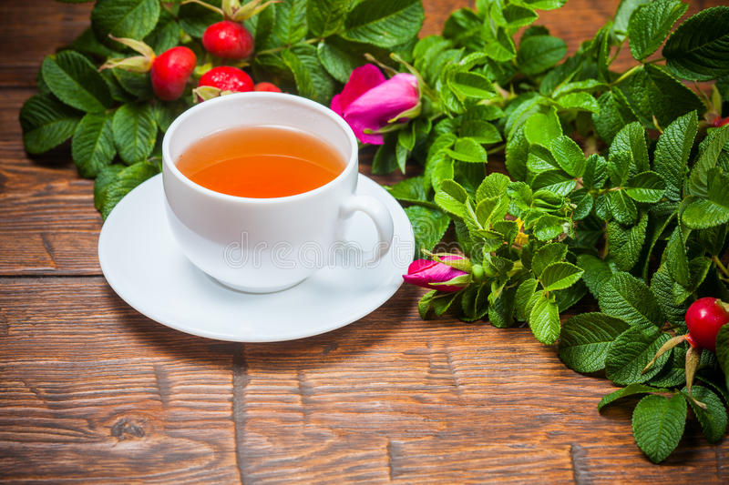 Healthy tea with a dogrose on wooden table stock image