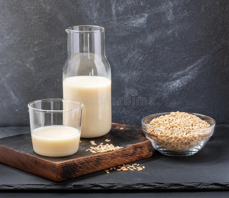 Healthy vegan dairy free oat milk in glass bottle and glass and oat seeds on glass bowl on grey background. royalty free stock photos
