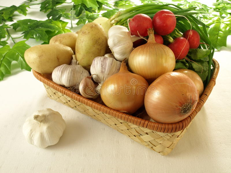 Healthy vegetables. Fresh and healthy vegetables from garden stock photos