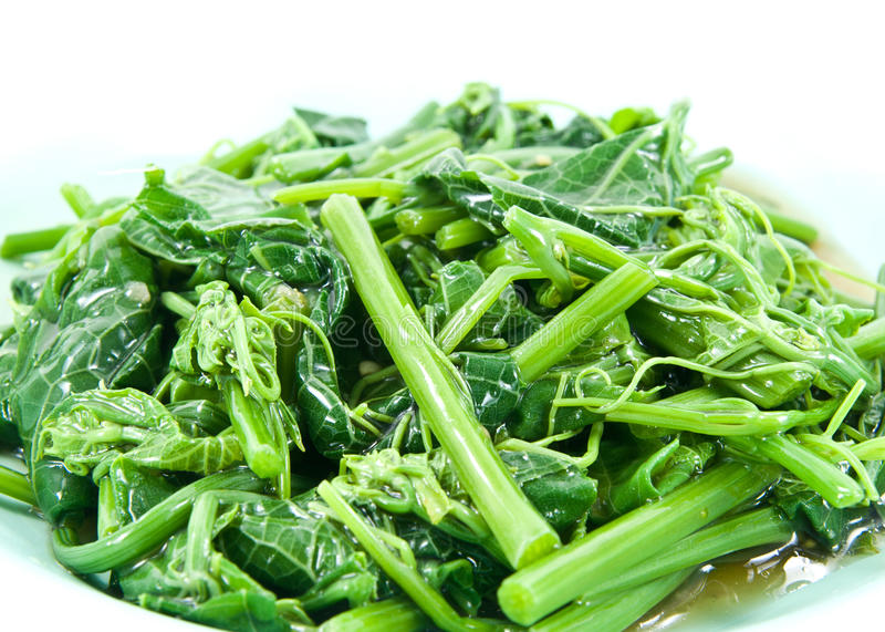 Healthy Vegetables (Melientha suavis Pierre). Healthy greens steamed vegetables(Melientha suavis Pierre) on dish royalty free stock images
