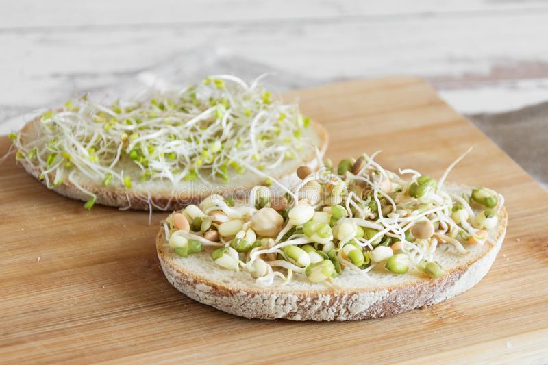 Healthy vegetarian sandwich with sprouted seeds royalty free stock photography