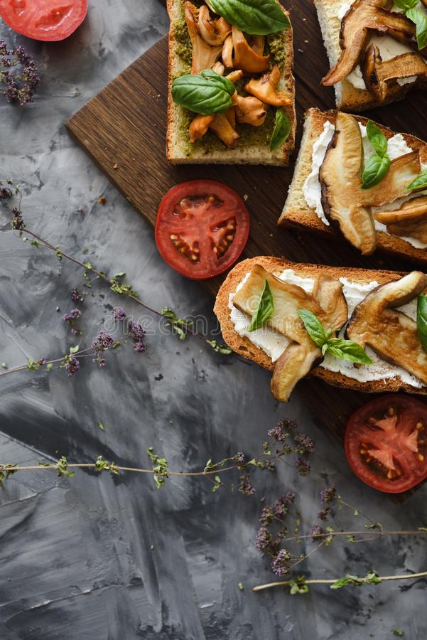 Healthy vegetarian snack. Bruschettas with chanterelle and porcini mushrooms with tomato and basil leaves on dark background copy stock images