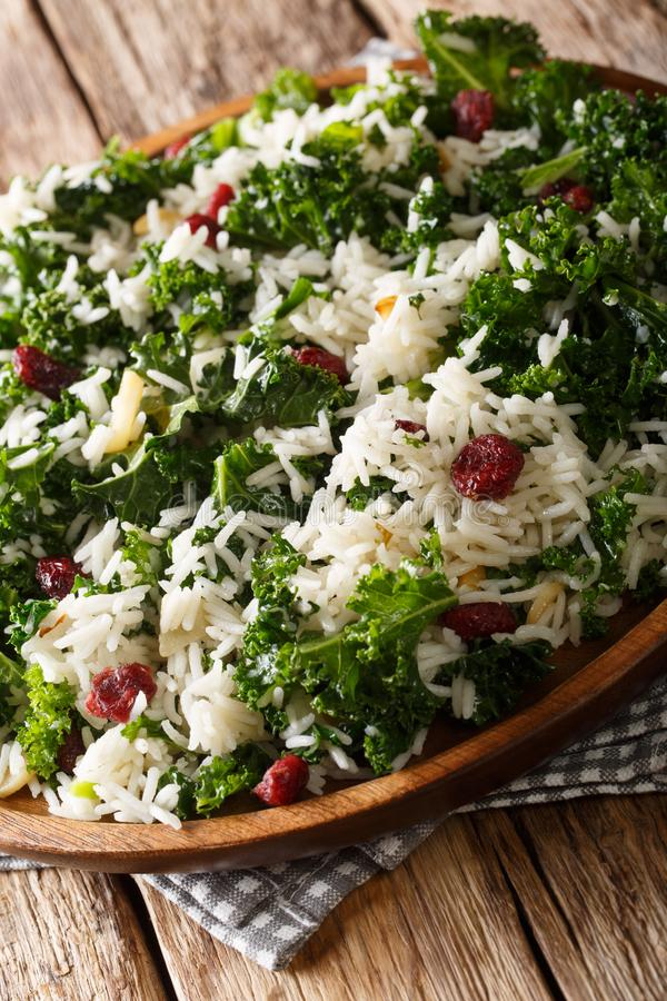 Healthy vitamin Kale with rice and cranberries close-up on a plate. vertical stock photography