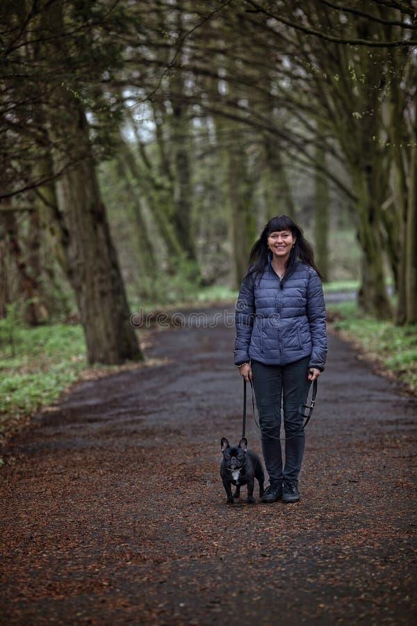 Healthy walk with a French bulldog stock photos
