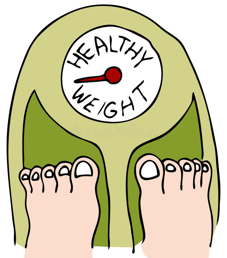 Download Healthy Weight stock vector. Illustration of graphic - 17668163