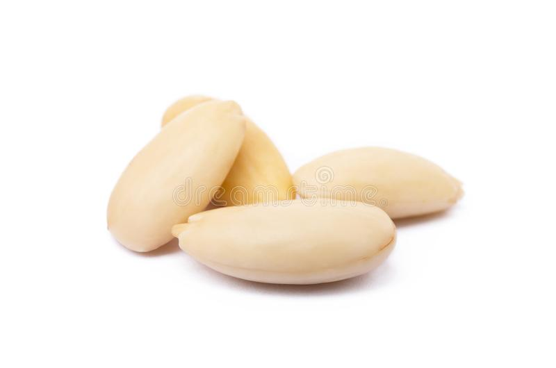 Fresh healty almond isolated stock photography