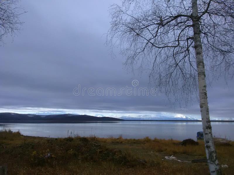 Healy See Alaska lizenzfreies stockfoto