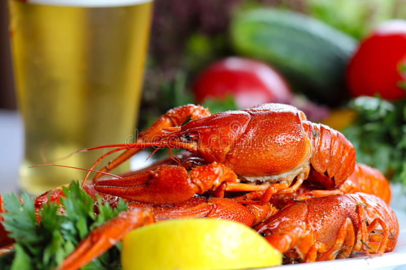 Download Heap Of Boiled Crafish, Glass Of Beer And Garnish Stock Photo - Image: 25738410