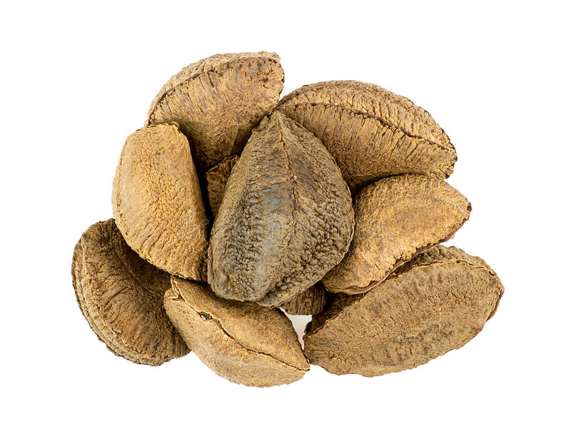 Heap of brazil nuts isolated on white royalty free stock image