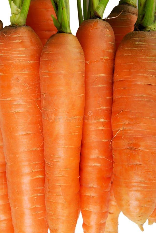 Heap of carrots royalty free stock photo