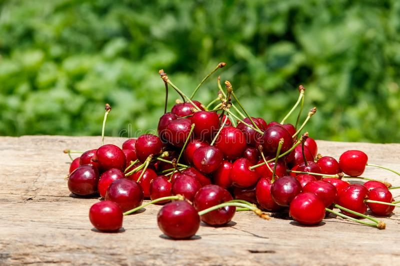 Heap of fresh cherry on rustic wooden table outdoor. Heap of fresh cherry on the rustic wooden table outdoor stock photo