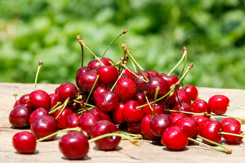 Heap of fresh cherry on rustic wooden table outdoor. Heap of fresh cherry on a rustic wooden table outdoor stock photo