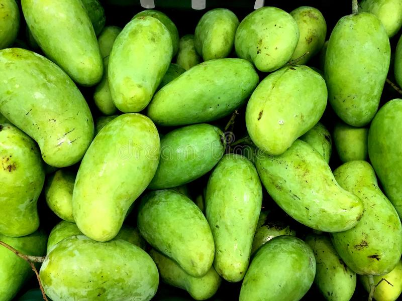 Heap of fresh green mangoes stock photo
