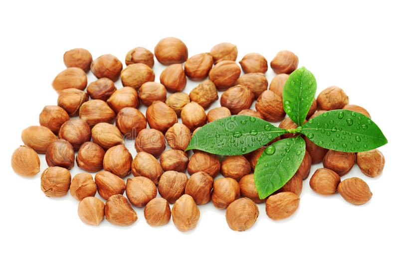 Download Heap Of Fresh Shelled Hazelnuts With Green Leaves Isolated Stock Image - Image: 29929379
