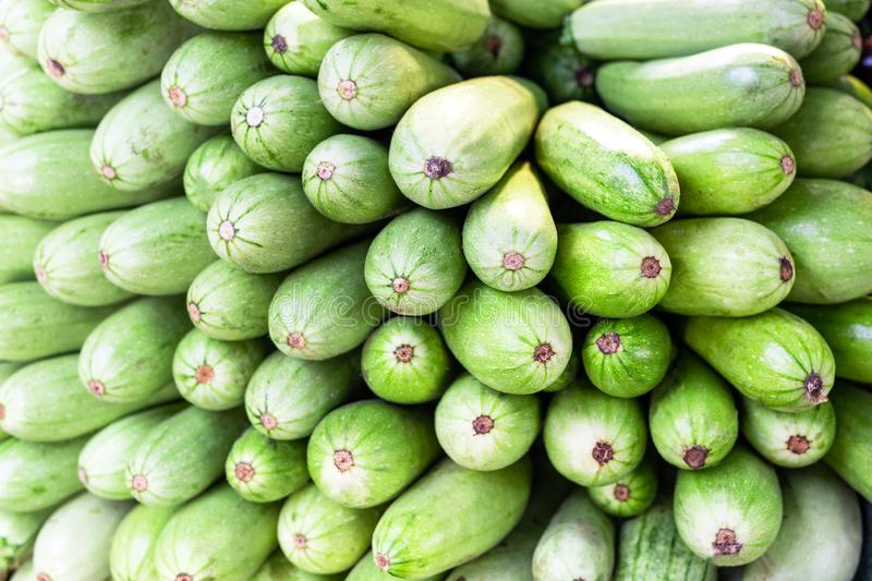Heap of green fresh cabbages and squash marrow row at wholesale market. Healthy natural ripe vegetables background. Farmers produc stock images