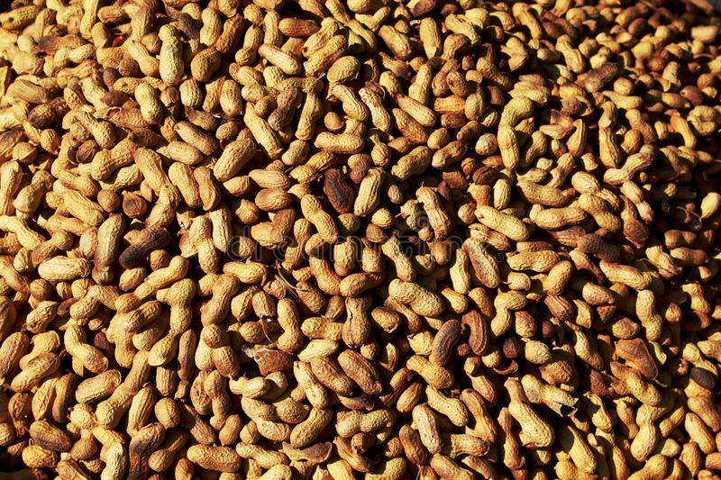 Heap of groundnut. Heap of steamed groundnut in a market for selling fresh food stock image