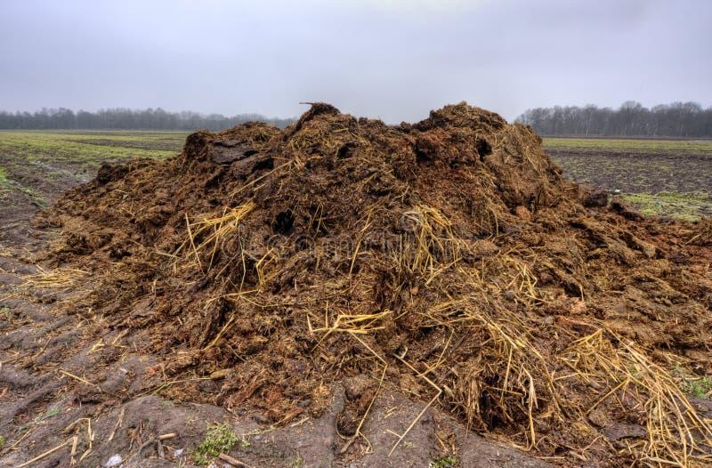 Heap of manure stock photo