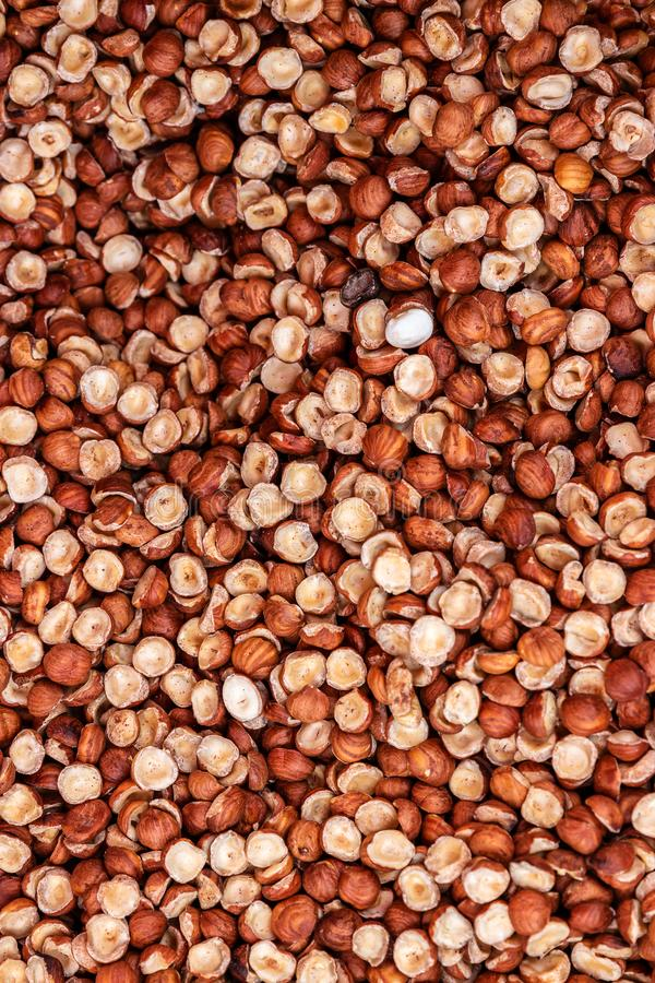 Heap of peeled halves hazelnuts without shell for background texture, close-up, top view, copy space for text stock photos