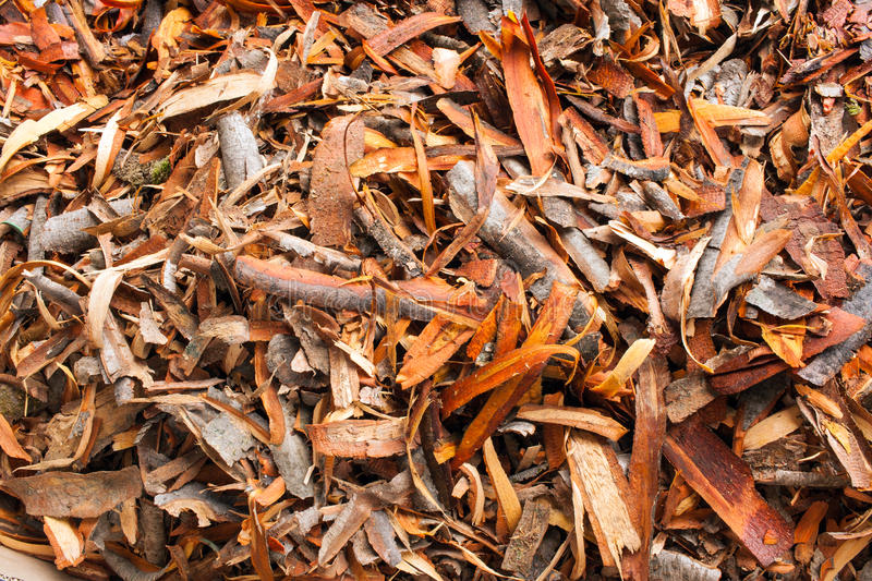 A heap of pieces of bark of alder. Pile of pieces of bark remaining after debarking alder trees royalty free stock photo