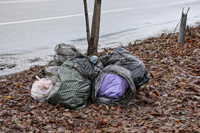 A pile of plastic bags with rubbish in the fallen leaves near the road royalty free stock photography