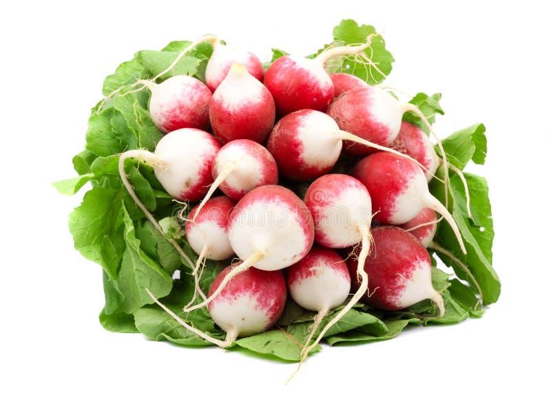Heap of radish stock photos
