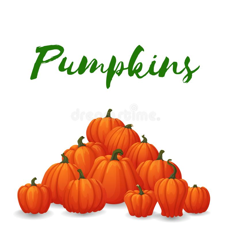Heap of ripe orange pumpkins with green stems isolated on white stock illustration