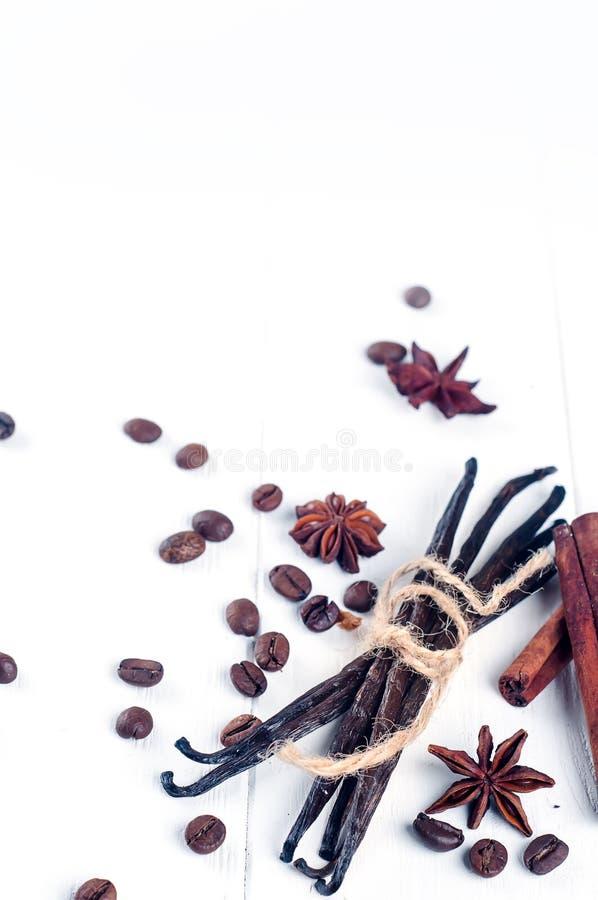 Heap of spices cinnamon sticks, vanilla , coffee bean and anise stars stock image