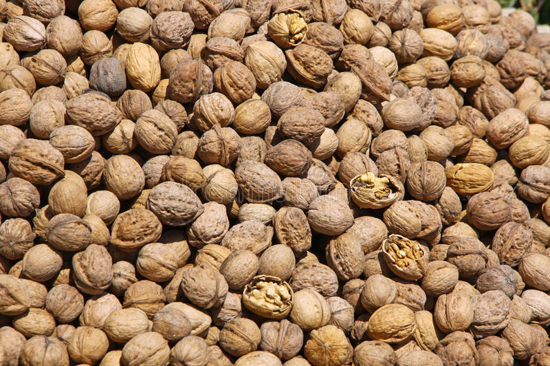 Download Heap Of Walnuts On A Market Stall Stock Image - Image: 25381587