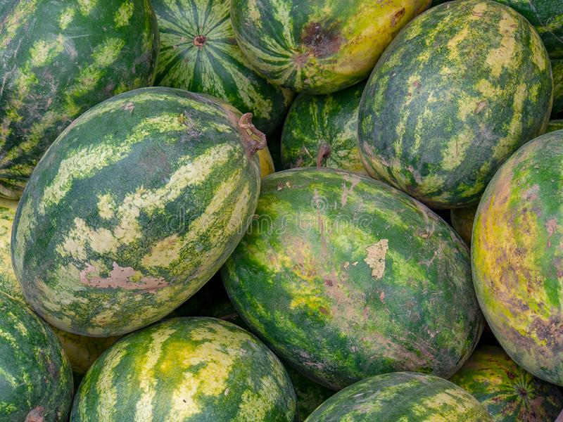 Heap of water melons in a market stock images