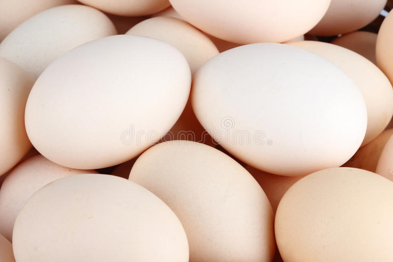 Heap of white chicken eggs. (background royalty free stock image